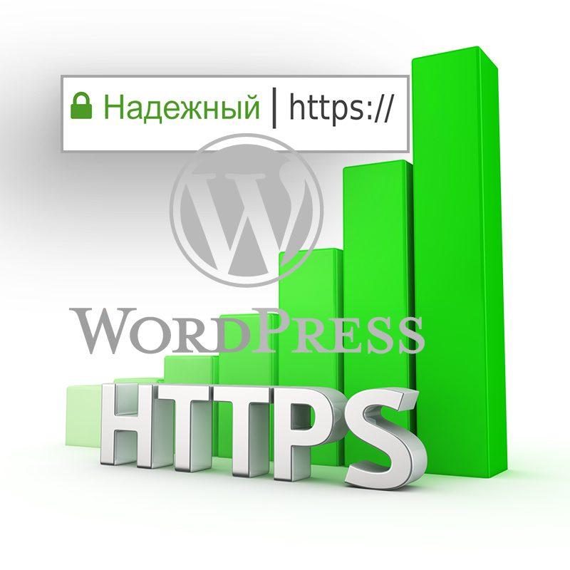 Полный перевод на HTTPS блога на WordPress нашим специалистом в течении 24 часов