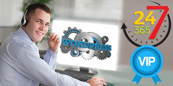 Приоритетная техническая поддержка сайта на WordPress для пользователей шаблона — конструктора AB-Inspiration