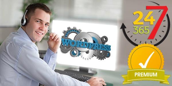 Приоритетное техническая поддержка сайта на WordPress